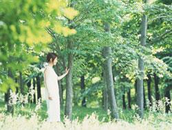 sj_kuremoto_20150720_1