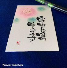 jm_miyahara_20170215_2